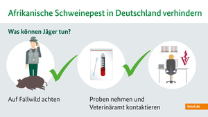 ASP_Infografik_Jaeger_1.jpg